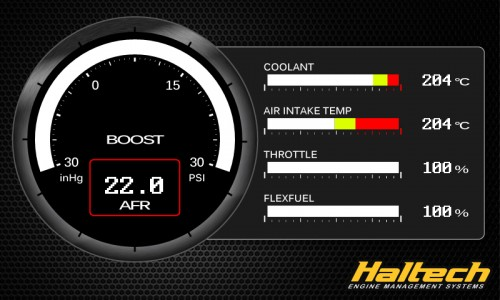 Haltech - 1006 - FlexFuel