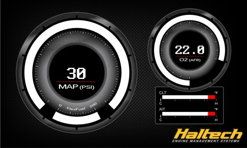 Haltech - 1010